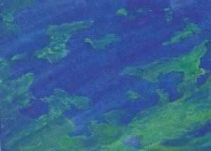 Terra – seaside1