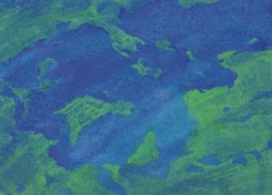 Terra – seaside2