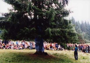 Human Time Tree